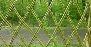 Tressage osier vivant osier vivant pinterest for Decoration pour jardin exterieur 1 vannerie exterieure haie vivante en osier tresse abri