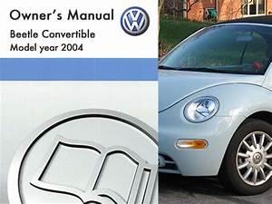 2004 Vw Beetle Schematic Power Top Motor