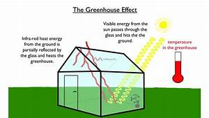 The Greenhouse Effect - In Less Than 30 Seconds