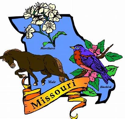Missouri State Flower Bird Symbols Clipart Animal