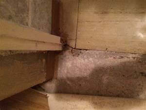 Vinyl Asbest Platten : asbesthaltige bodenbel ge flexplatten cushion vinyl ~ A.2002-acura-tl-radio.info Haus und Dekorationen