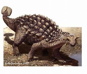 Snarlu2019s Dino Facts Ankylosaurus