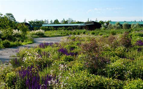 meadow gardens tokachi millennium forest