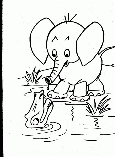coloring pages  wild animals coloring home