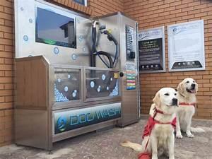 Go Dogs Go Photos Evolution Dog Wash