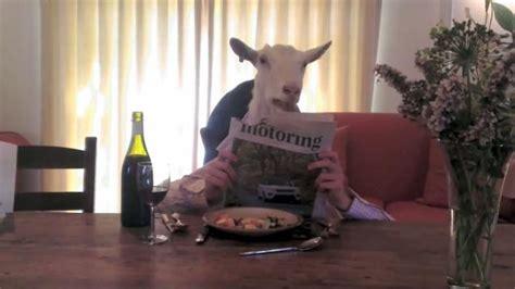 goat eating dinner shut  im talking