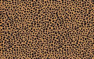 Cheetah Backgrounds