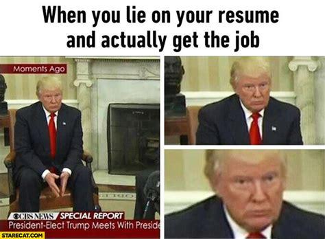 donald memes starecat