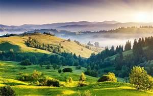 Nature, Mountain, Forest, Landscape, Fog, Lake, Ultrahd