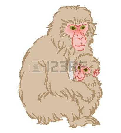japanese macaque clipart  japanese macaque