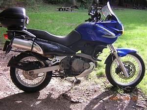 Suzuki Freewind 650 : 2003 suzuki xf 650 freewind picture 1037147 ~ Dode.kayakingforconservation.com Idées de Décoration