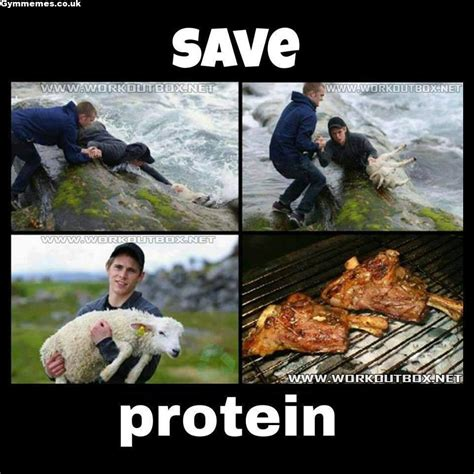 Protein Meme - save the protein gym memes a massive collection of gym memes and more funny work out videos