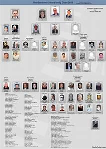 Gambino Crime Family Chart 2016 Gambino Family Gallery