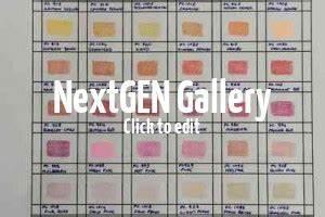Faber Castell Classic Colour Chart Color Chart For Prismacolor Premier Colored Pencils