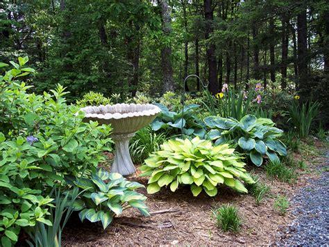 Small Garden Ideas On A Budget Ireland Pinterest Gardens