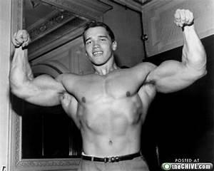 A young Arnold Schwarzenegger (15 photos) : theCHIVE