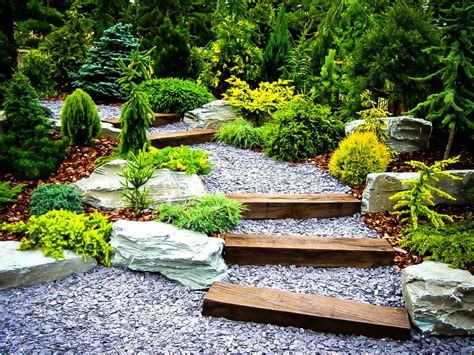 Japanese Style Garden by Plants For A Japanese Garden The Tree Center