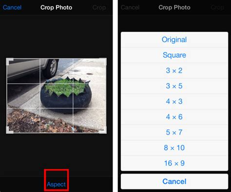 crop on iphone how to crop an iphone photo in ios 7 the iphone faq