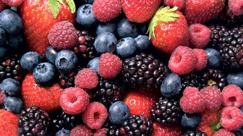 Berries May Improve Cognitive Functions, Research Ongoing