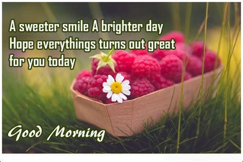 unique good morning quotes  wishes  happy