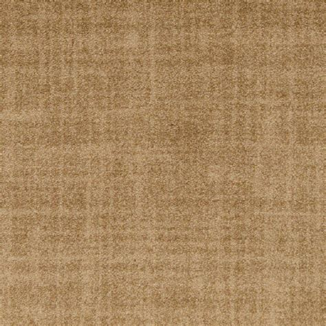 Shop Stainmaster Tan Nylon Fashion Forward Carpet Sample