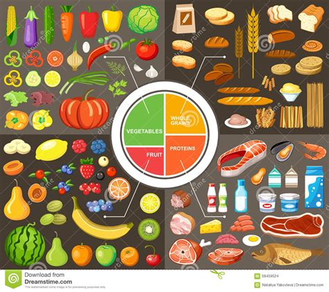 Set Of Products For Healthy Food Stock Vector - Image