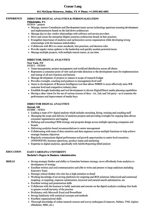 Resume For Analytics by Director Digital Analytics Resume Sles Velvet