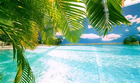 Tropical Islands Tropical Islands Is Europe's Largest