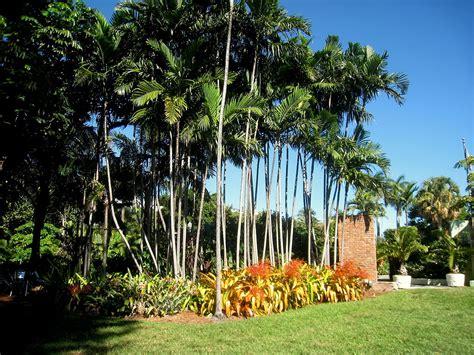 Gardens In Miami hardiness heat zone map for miami gardeners lawnstarter
