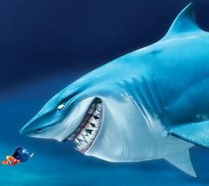 Bruce Finding Nemo Quotes. QuotesGram