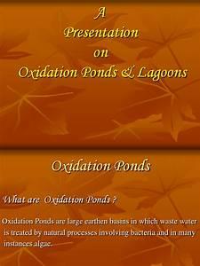 Oxidation Ponds  U0026 Lagoons