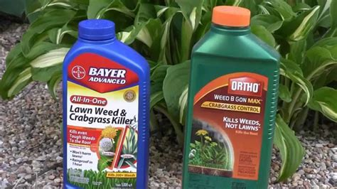 What Is The Best Weed Killer For Lawns