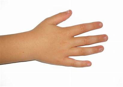 Hand Finger Fingers Right Child Nails Human