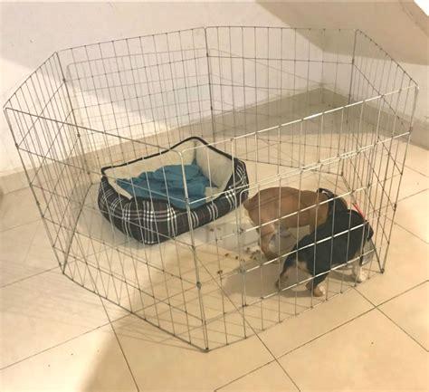 corral perro paneles 60cm alto oferta