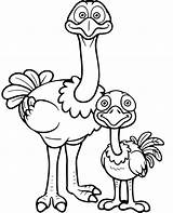 Ostrich Ostriches Toucan Zoo Coloringgames Coloringwizards sketch template