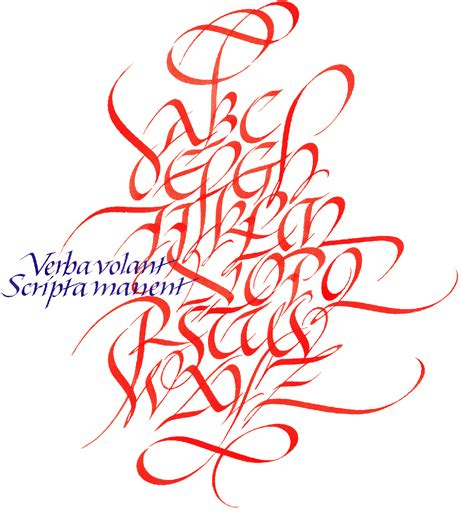 Verba Volant Scripta Manent Verba Volant Scripta Manent Diario De Una Novela
