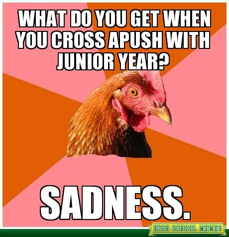 Apush Memes - what do you get when you cross apush with junior year i am afraid i will be feeling this way