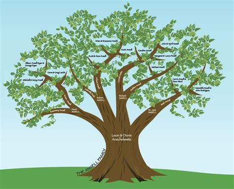 design a tree family tree created in illustrator