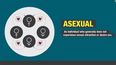 asexual people  fantasize  sex study finds
