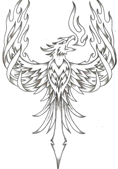 phoenix coloring pages   getcoloringscom  printable colorings pages  print  color