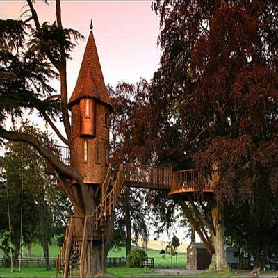 tree houses caelum  terra