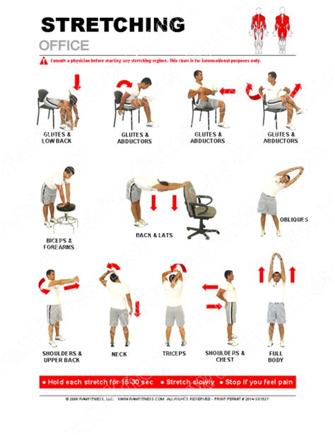 Office stretching poster 24 x 36. Office Stretches