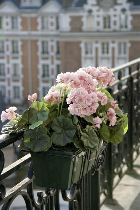 balkon blumen fuer eine schoene aussengestaltung