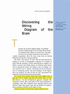 Discovering The Wiring Diagram Of The Brain