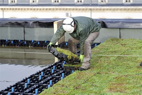 au bureau strasbourg une toiture hydroactive se met en place à nancy chantiers