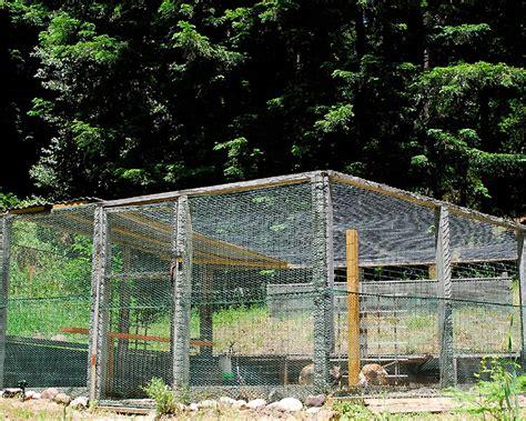 turkey coop plans the turkey pen curbstone valley