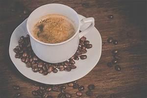 Kopi Luwak Zubereitung : kaffeeblog von mein eigener kaffee wissen rund um kaffee das kaffee wiki ~ Eleganceandgraceweddings.com Haus und Dekorationen