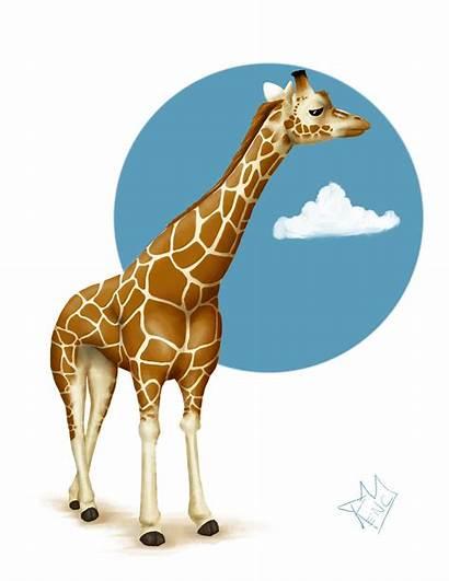 Giraffe Illustration Illustrations Cartoon Clip Clipart Giraffes