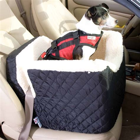 gadgets   dog friendly road trip healthy paws pet