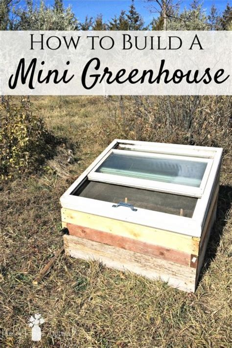 Diy greenhouses can be put together quite inexpensively if you make use of recycled common greenhouses come in many forms. How to Build Your Own Mini Greenhouse for Free | Mini ...